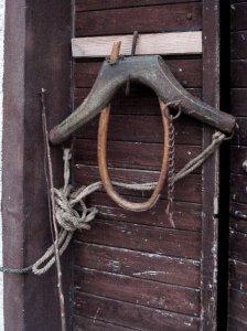 Žil na štalnih vratih